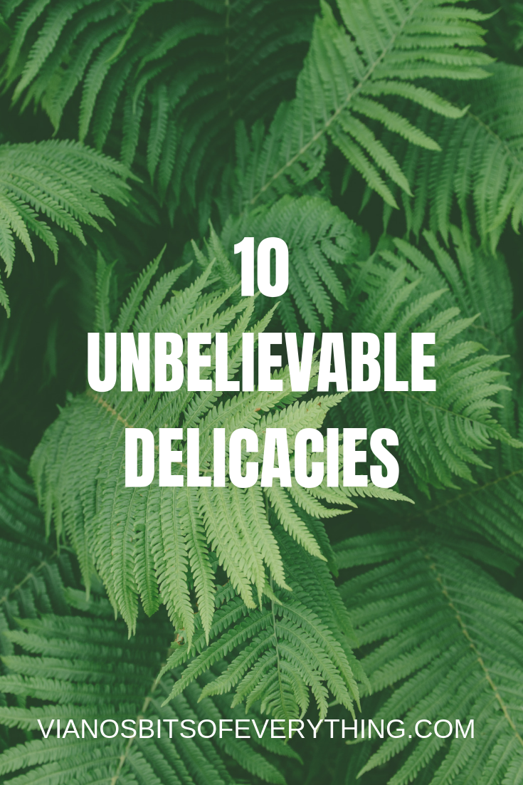 10 UNBELIEVABLE DELICACIES