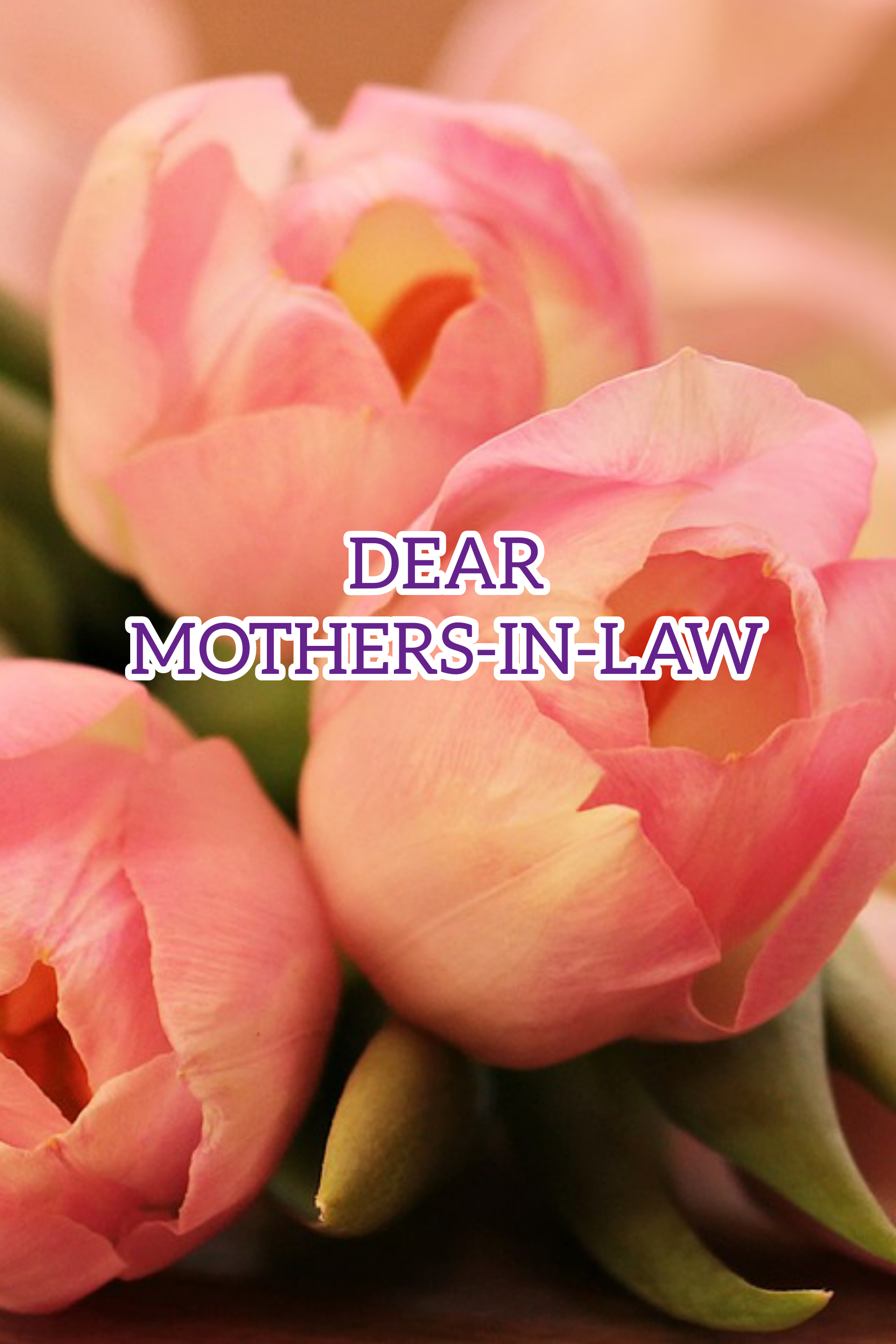 Dear Mothers-In-Law