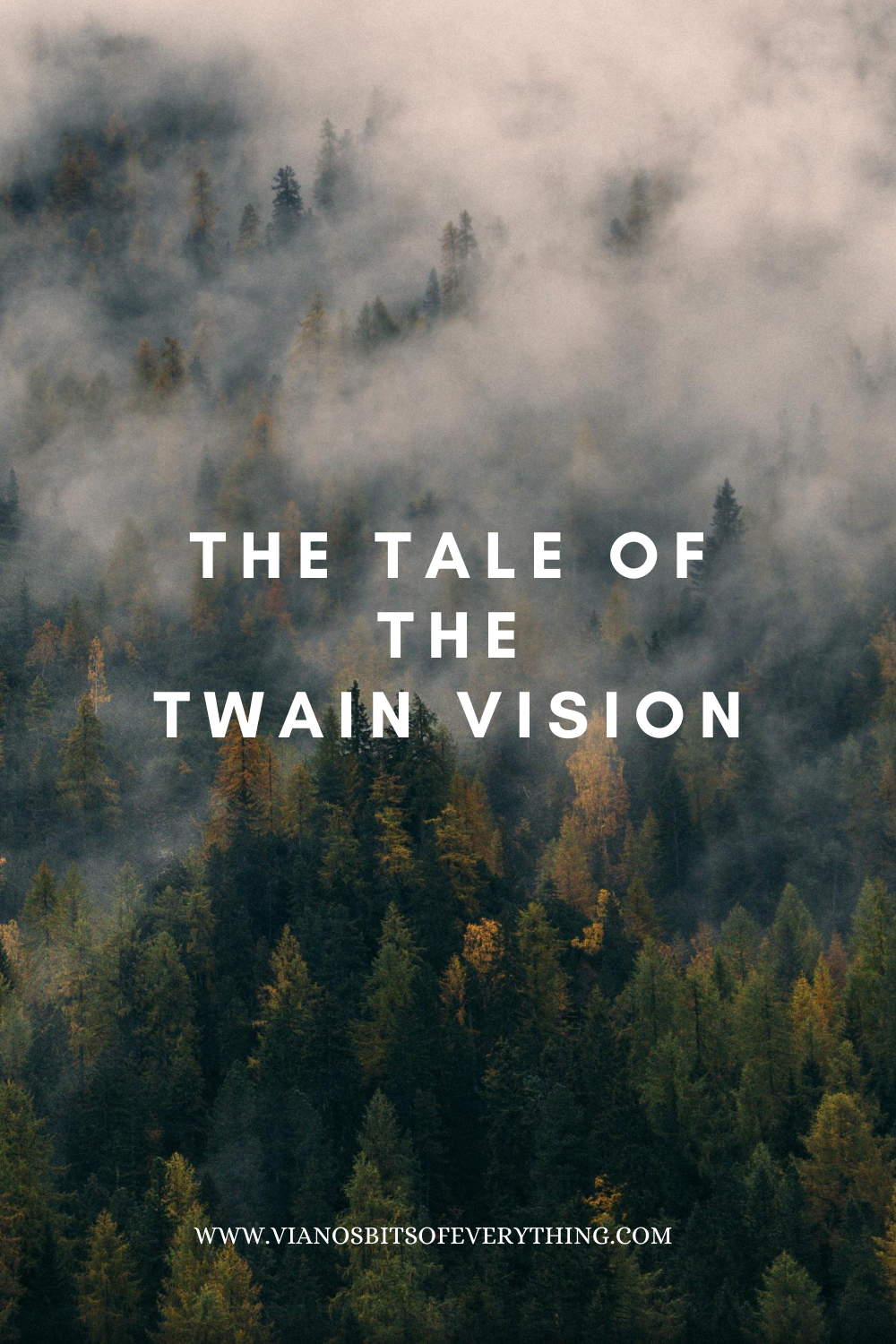 The Tale Of The Twain Vision