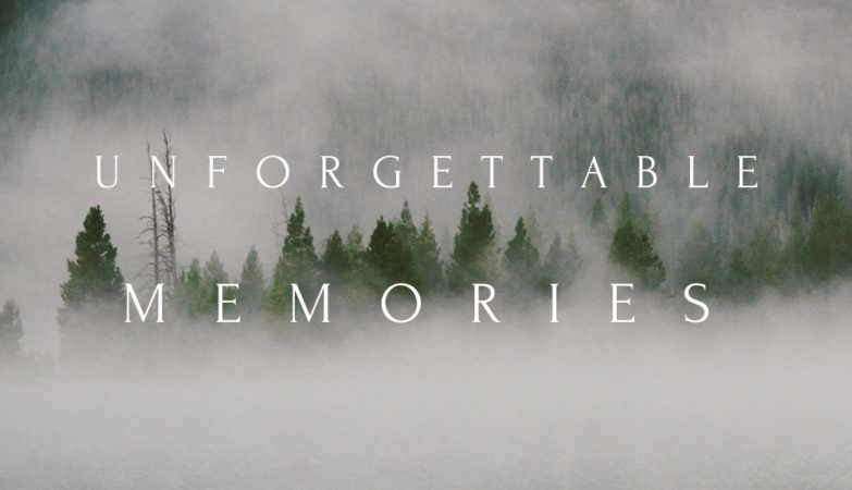 unforgettable memories by viano dee 2020