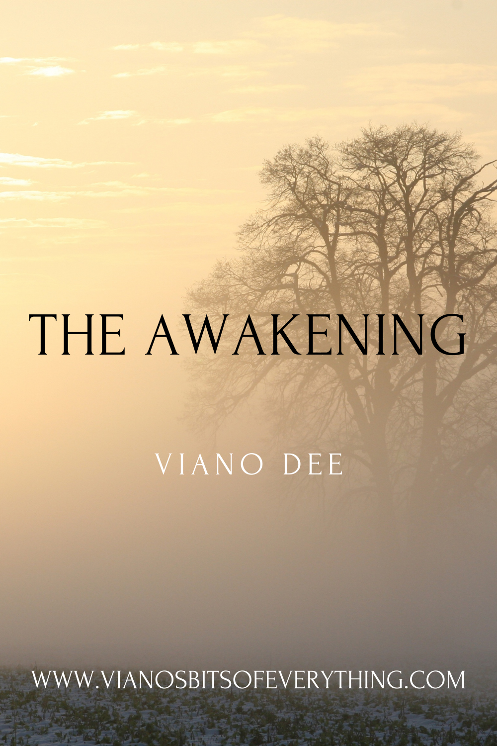 The Awakening || Viano Dee Free Download